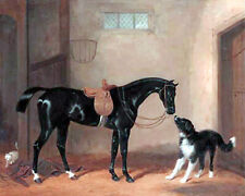The Black Hunter Horse In Saddle & Dog Oil Painting Real Canvas Art Print
