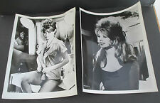 Lot of 2 Vintage 1950s-1960s BRIGITTE BARDOT Photos