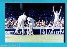 #NN, #8.  CRICKET  PHOTOGRAPH - COLIN MILLER, 5th Test 2001