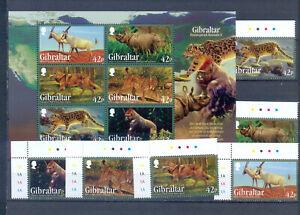 GIBRALTAR ANIMALS 2010  MNH