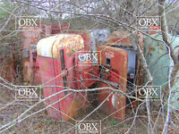 8x10 Photo: A Retired Stand of Vintage Coke Machines! OBX woods, Currituck NC.