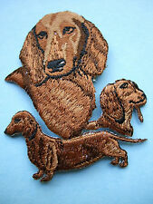 IRON-ON EMBROIDERED PATCH - DACHSHUND - RED - DOG
