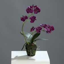 Orchidee Phalaenopsis 2 Rispen Seidenblume Kunstpflanze bordeaux 60168-09 F1