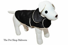 Vestiti e scarpe beige taglia cane S per cani