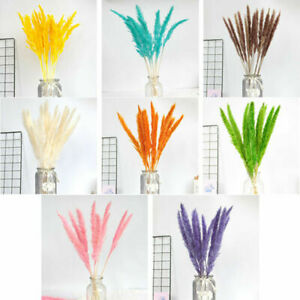 15PCS Natural Dried Pampas Grass with Wheats Bouquet Reed Flower Bunch Decor