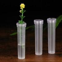 25Pcs Plastic Flower Tubes Floral Water Tube For Wedding Keeping Flower Fresh