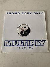 "Lil Mo' Yin Yang – Reach Basement Jaxx Alcatraz Remix 12"" House Vinyl Promo"