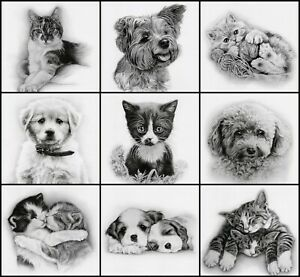 DOGS / CATS QUALITY BIRTHDAY GREETING CARD BY TRACKS - MULTIPLE DESIGNS FREE P&P