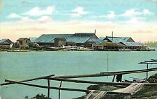 c1910 Postcard; Ewen's Salmon Cannery near Westminster BC Canada on C.P.R.