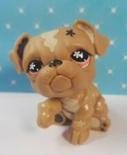 Littlest Pet Shop LPS Figur #607 Bulldogge