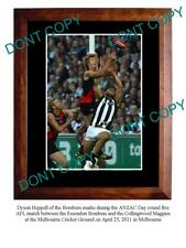 DYSON HEPPELL ESSENDON FC STAR A3 PHOTO PRINT 4