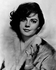 Natalie Wood 8x10 Classic Hollywood Photo. 8 x 10 B&W Picture #9
