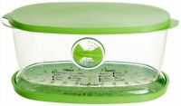 LETTUCE CRISPER-VEGGIE SALAD SAVER-W SPIKES-VEGAN LIFE-BPA FREE-ALL GREEN-118 OZ