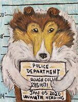 Rough Collie Mug Shot Jail Humor 13 x 19 Dog Art Print Signed by Artist KSams