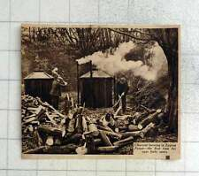 1939 Charcoal Burning In Epping Forest, First Time For 40 Years