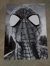 SPIDERMAN ART PRINT SIGNED BY DON MONROE 13X19