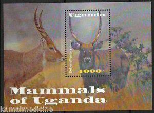 Waterbuck, large Antelope wild animals deer, Uganda 2002 MNH SS