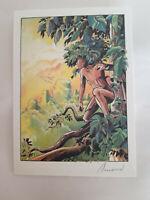 """ex libris Arnaud """" jungle 01 """" 15x21  signé ( 300 exemplaires) trés bon état"""