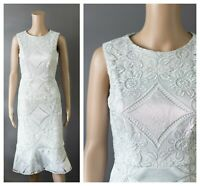 ex Phase Eight Lace Embroidered Frill Hem Silver Occasion Party Dress