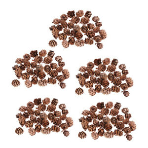 150pcs Small Natural Dried Pine Cones In Bulk Dried Flowers for Christmas Decors