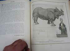 rare livre - raemaekers  cartoons 1919 - guerre 14 18