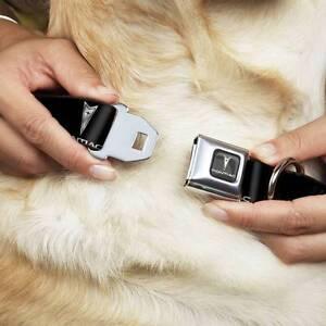 Pet Dog Collar Leash Harness Pontiac Firebird G6 G8 GTO Logo Black Silver Medium