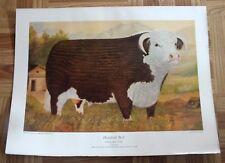 Ross Butler Cow Print Hereford Bull Standard Type Canadian Breeders Farm Animal