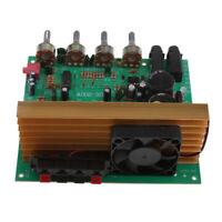 OK100 2.0 Dual Channel Channel Digital Power Audio Stereo Amplifier Board