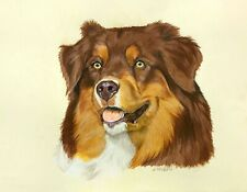 "Australian Shepherd Red animal dog 11""x14"" pet A3 drawing on paper by ArtKaska"