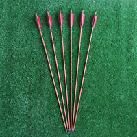 Hunting Carbon Arrows Ture Feather Spine 500 Recurve Bow Compound Bows Arrows