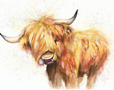 Limited Print of HIGHLAND COW watercolour by HELEN APRIL ROSE   439