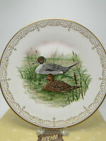 "Boehm Ltd Ed Plate ""American Pintails"" Water Bird Collection Bone China w box"