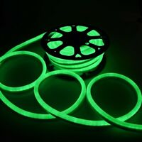 DELight® 50' FT Green LED Neon Rope Light Xmas Home Outdoor Holiday Decor 110V