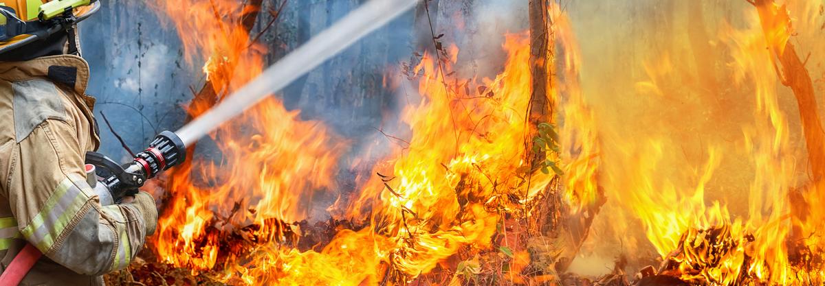 Bushfire Store Australia