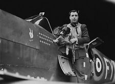 WW2 Photo WWII RAF Spitfire Pilot on Wing with Dog Britain  World War Two /5200