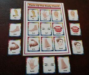 Body Parts  Matching Game  Toddler first game -   EYFS SEN  Childminder