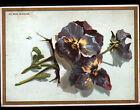 IMAGE AU BON MARCHE / GRANDE CHROMO / FLEUR PENSEE style Catharina KLEIN