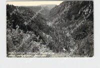 RPPC REAL PHOTO POSTCARD ARIZONA FLAGSTAFF OAK CREEK CANYON FROM RIM