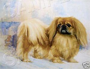 VINTAGE VICTORIAN PEKINGESE CANVAS DOG ART PRINT