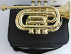 Pocket Trumpet 3V Pro Shinning Brass with Mouth Piece And Case