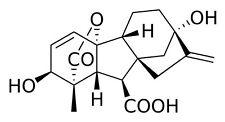 Gibberellinsäure ( gibberellic acid )  GA3   90+% - 0,1 Gramm