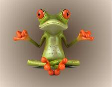 METAL MAGNET 3d Frog Meditating Yoga Amphibian Frogs Humor MAGNET