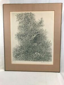 Great Orig. 1964 signed & dated Gabor F. Peterdi ~  Modernist Etching Matted