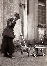 ITALIAN GREYHOUND DOG GREETINGS NOTE CARD LADY DOG COLLECTING WITH TOY AMBULANCE