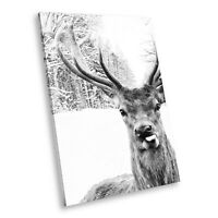 A234 Winter Stag Deer Black White Animal Portrait Canvas Picture Print Wall Art
