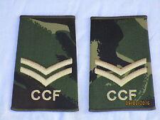 Rango cinghie: caporale, CCF, DPM, Combined Cadet Force, COPPIA, 60x95mm