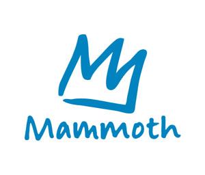 Mammoth lift ticket