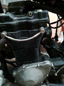 Suzuki Bandit/ Gsf 1200 engine carbs loom