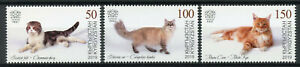 Kyrgyzstan KEP 2019 MNH Domestic Cats Scottish Fold Maine Coon 3v Set Stamps
