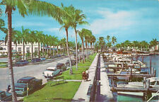 Old postcard Fort Myers, FL, Coconut Palm-Lined Avenue Along Yacht Basin